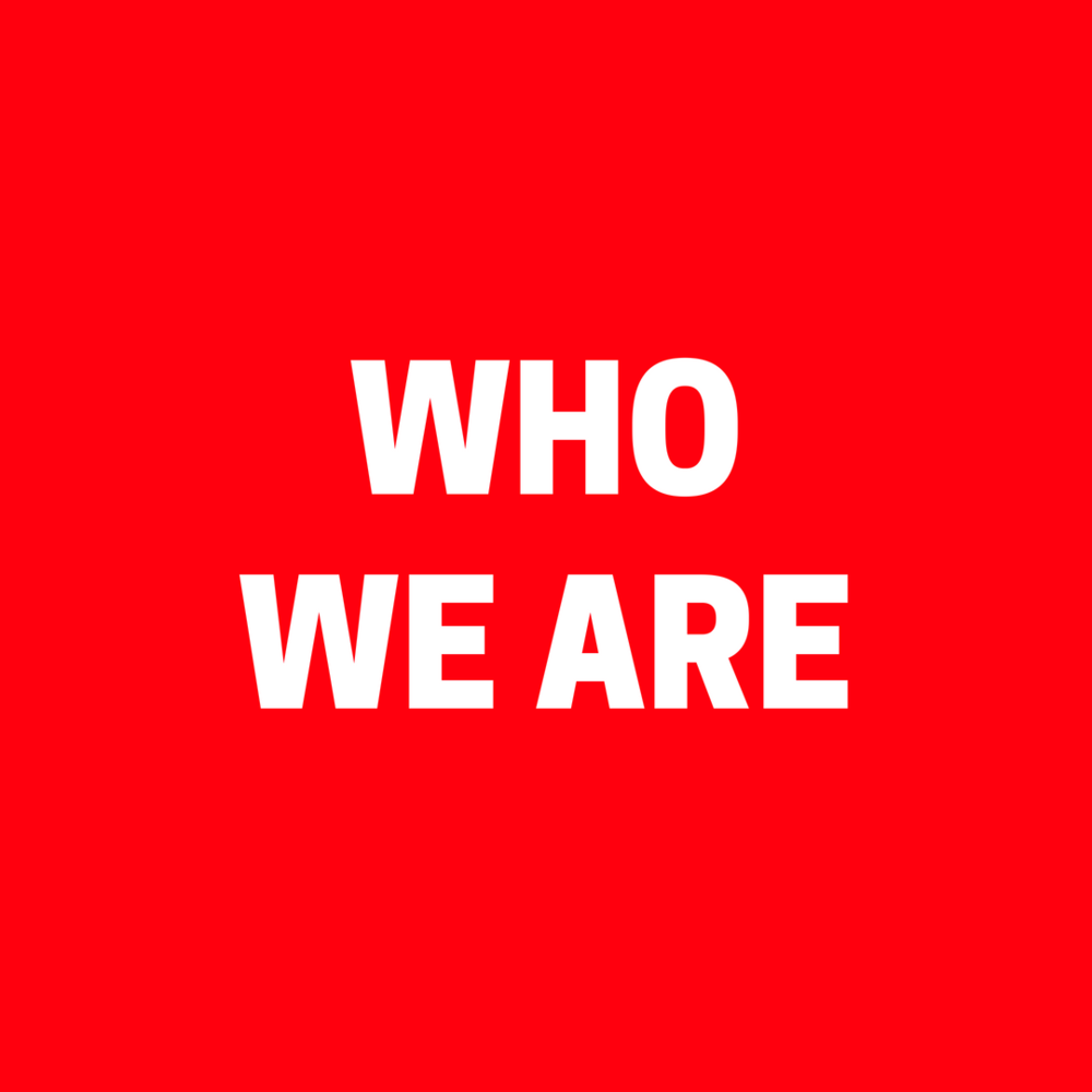 Copy of WHO WE ARE.png