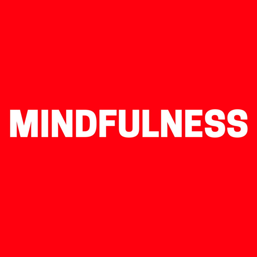 MINDFULNESS 3.0.png