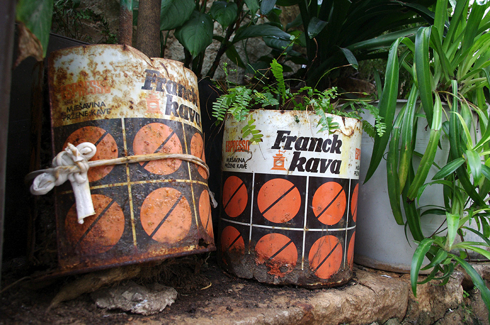 Coffee tin pot plants in Croatia
