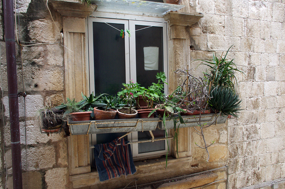 Balcony pot plants, also in Croatia