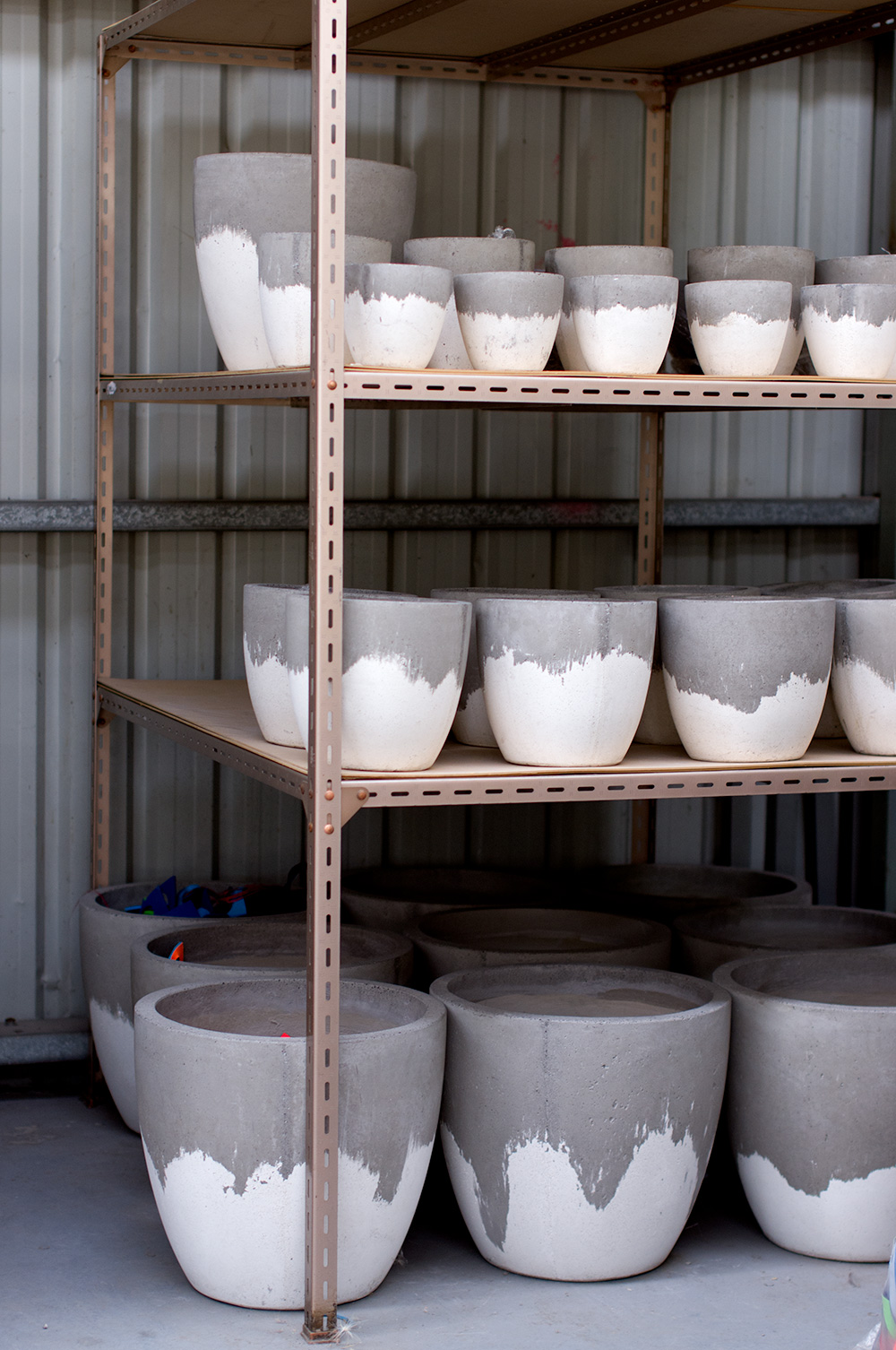 White Wash planters all lined up and in size order. Photo by Susan Fitzgerald.