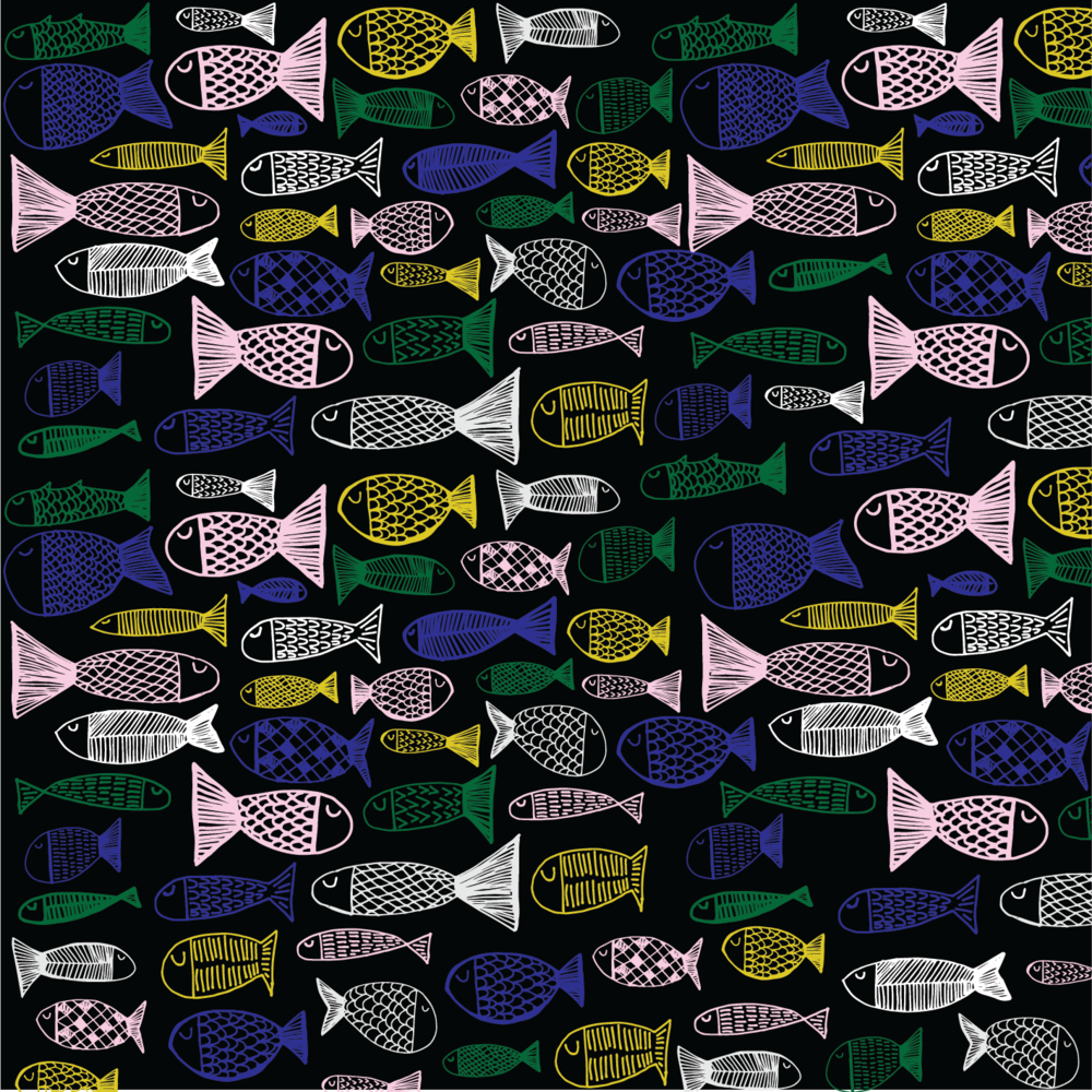 Fish  ©  Spin Spin | Susan Fitzgerald