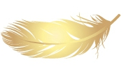 The Coop-logo feather.jpg