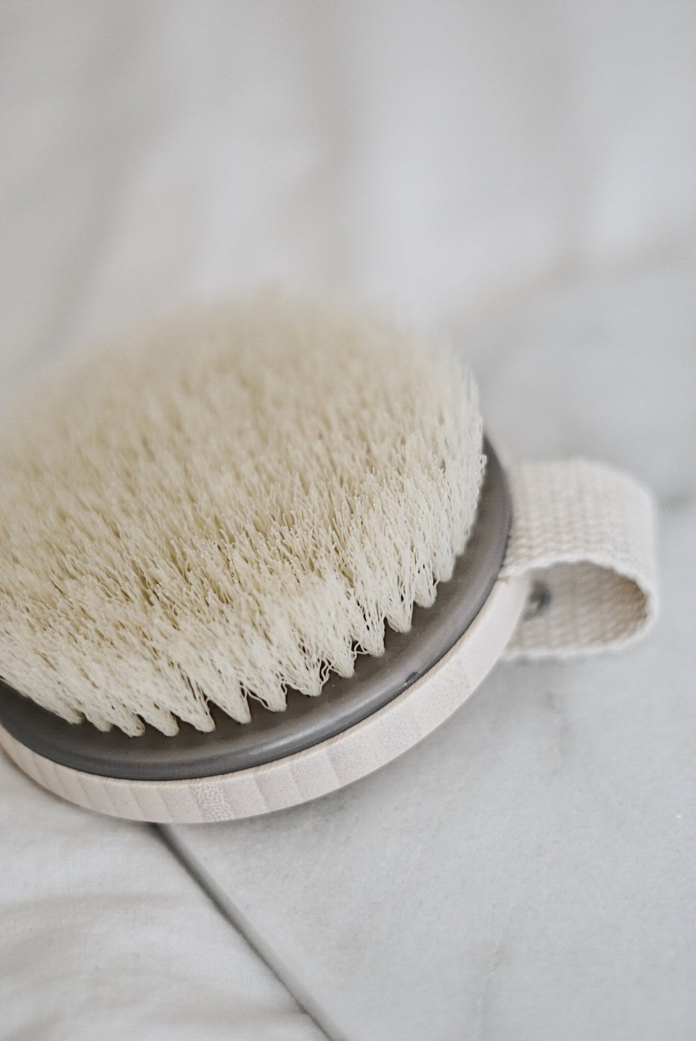 Eco Tools Dry Brushing