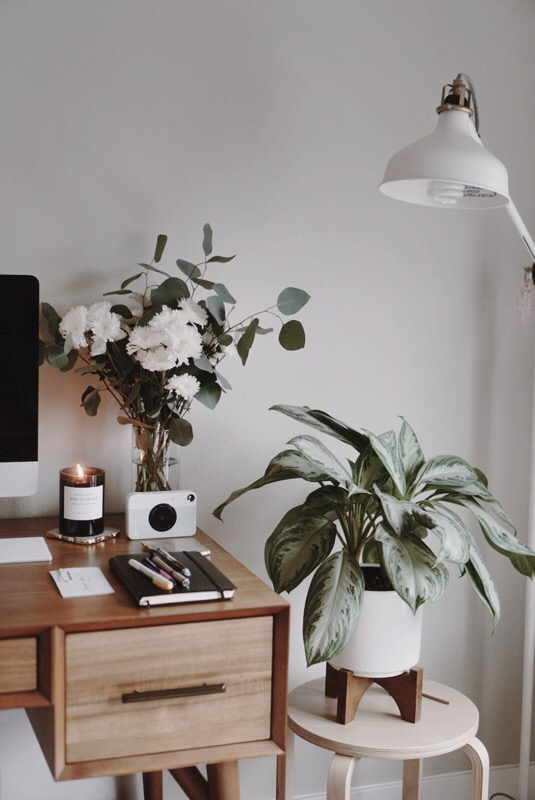 CHY Life Lately, Greenery. West Elm, Home Decor