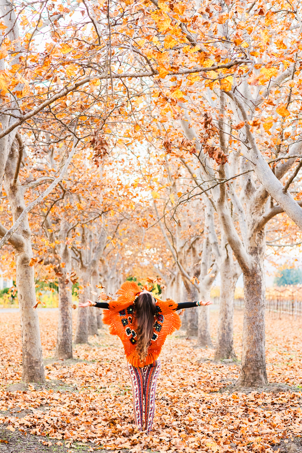 Yogi Amanda in the fall in Napa // Ashley Petersen Photo