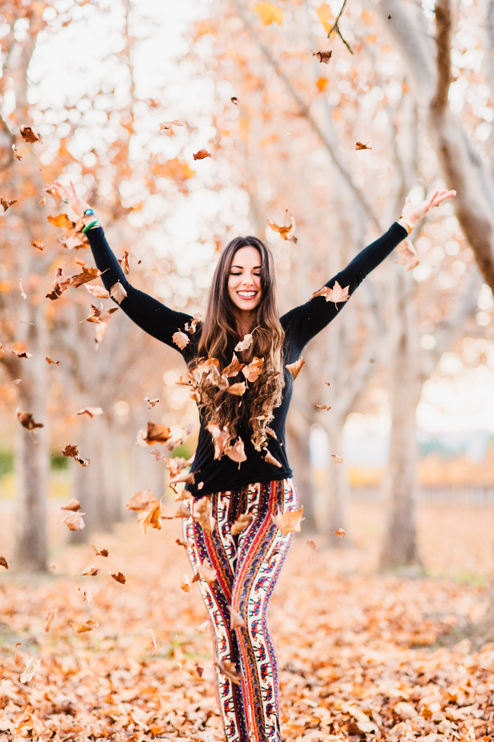 Napa in the fall // Ashley Petersen Photo