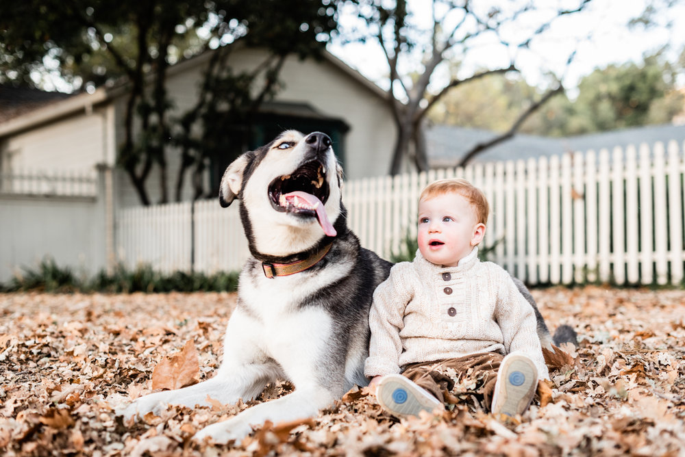 Dog and toddler portrait at Hap Magee Park.