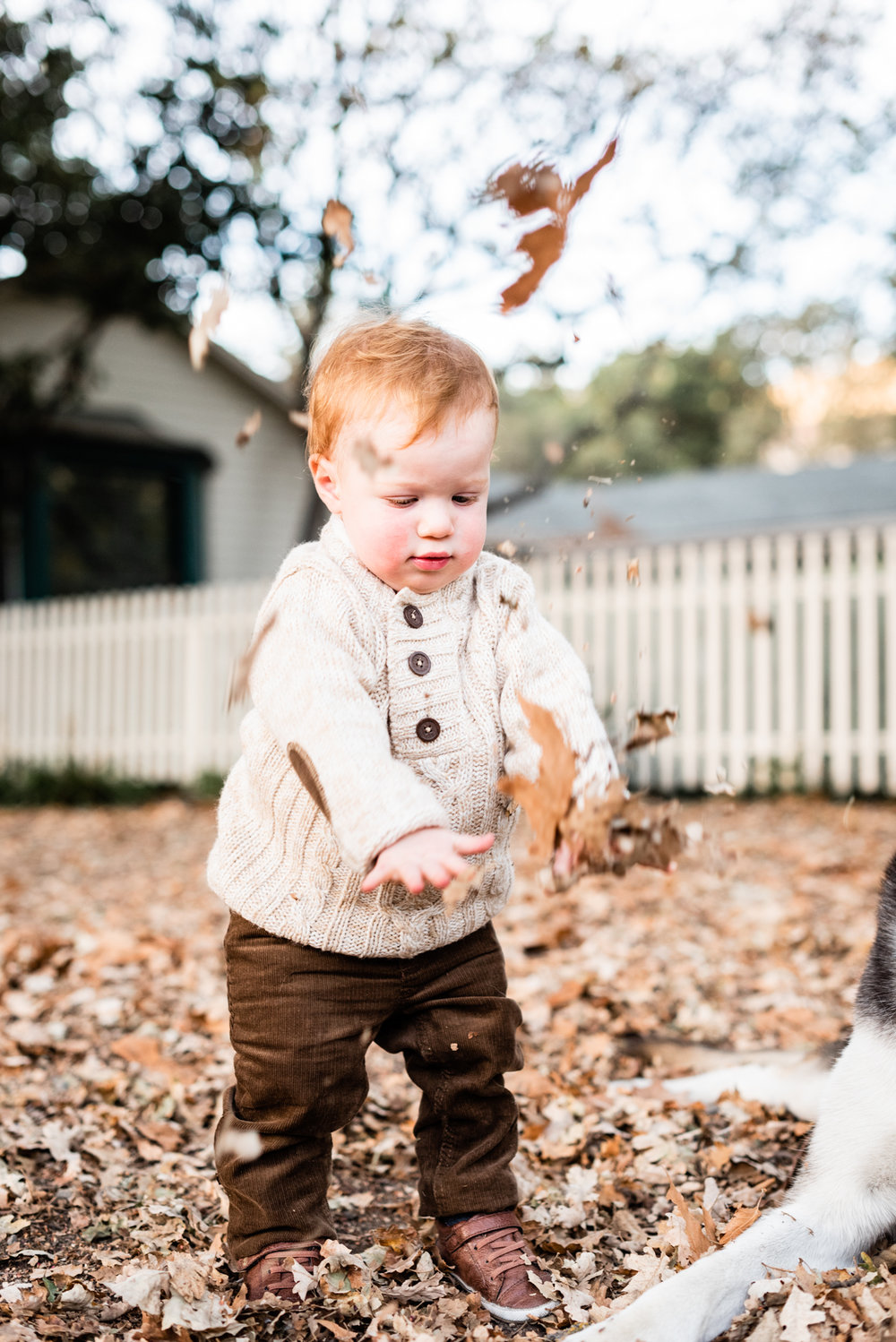 Toddler lifestyle at Hap Magee Park