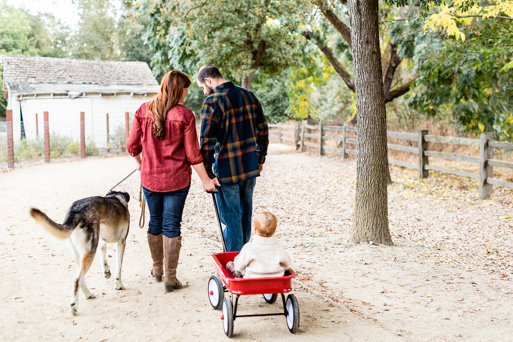 Family lifestyle portrait in Danville, CA.