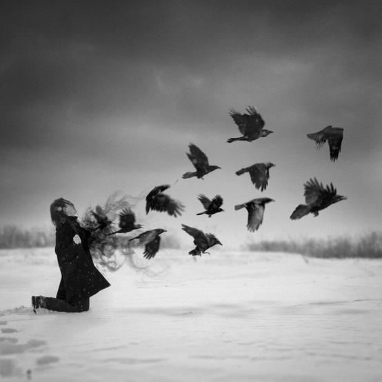 hooponopono birds.jpg