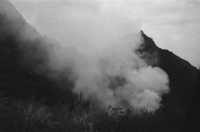 燃燒的桔梗    連州 2015年春  28 x 35.5 厘米/ 51 x 61 厘米