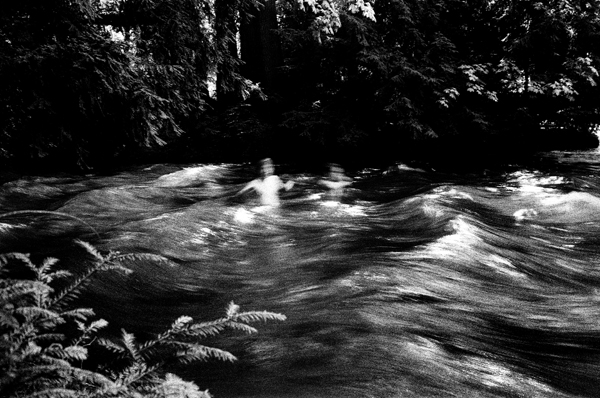 河中泳者 慕尼黑英國公園 2014年夏  28 x 35.5 厘米/ 51 x 61 厘米