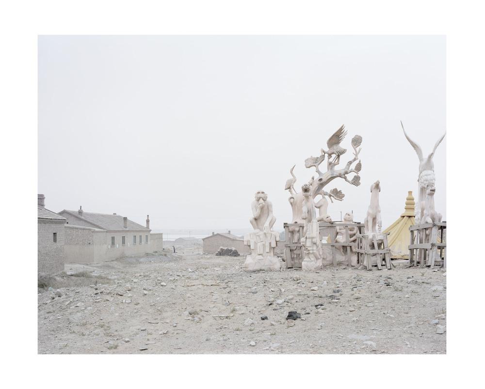 冷卻下的白鹿, 內蒙古, 2011       100 x 120 厘米/ 112x 138 厘米/ 140 x 168 厘米