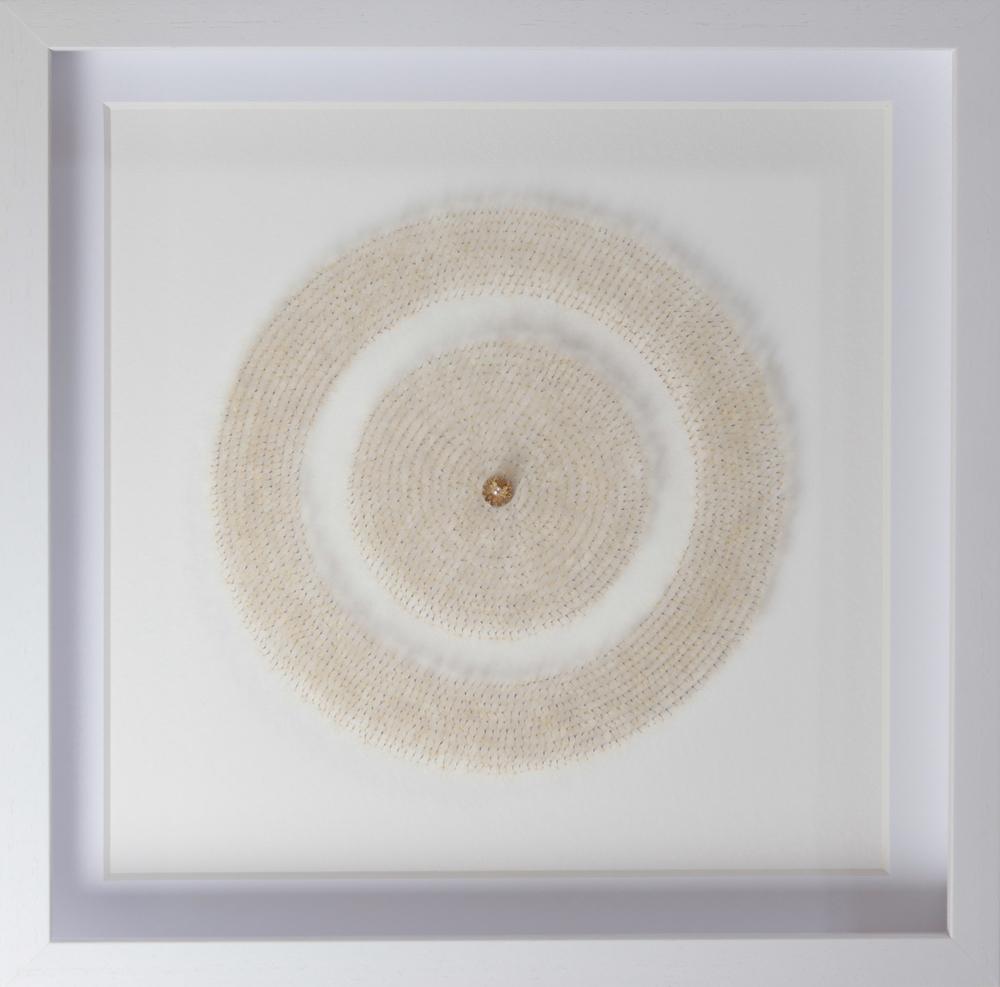 單色的蒲公英 #1    50 x 50  x 6 厘米