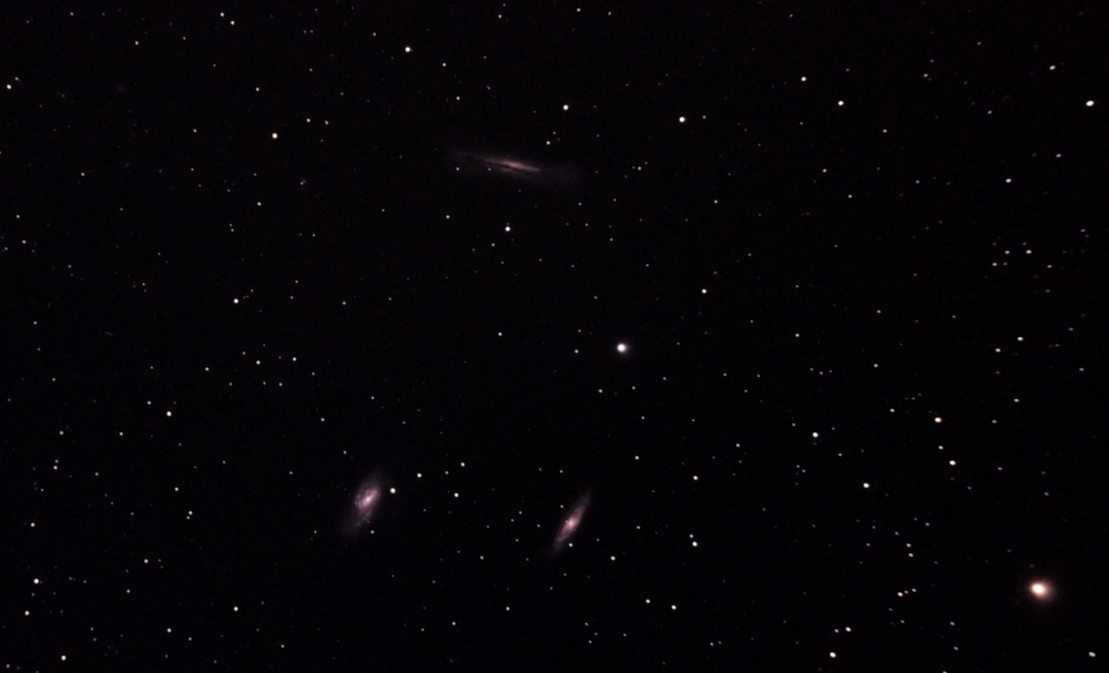 The Leo Triplet - M66 group