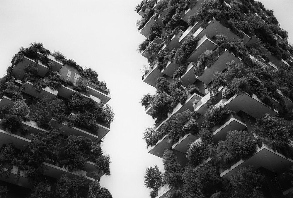 Milano, Bosco Verticale