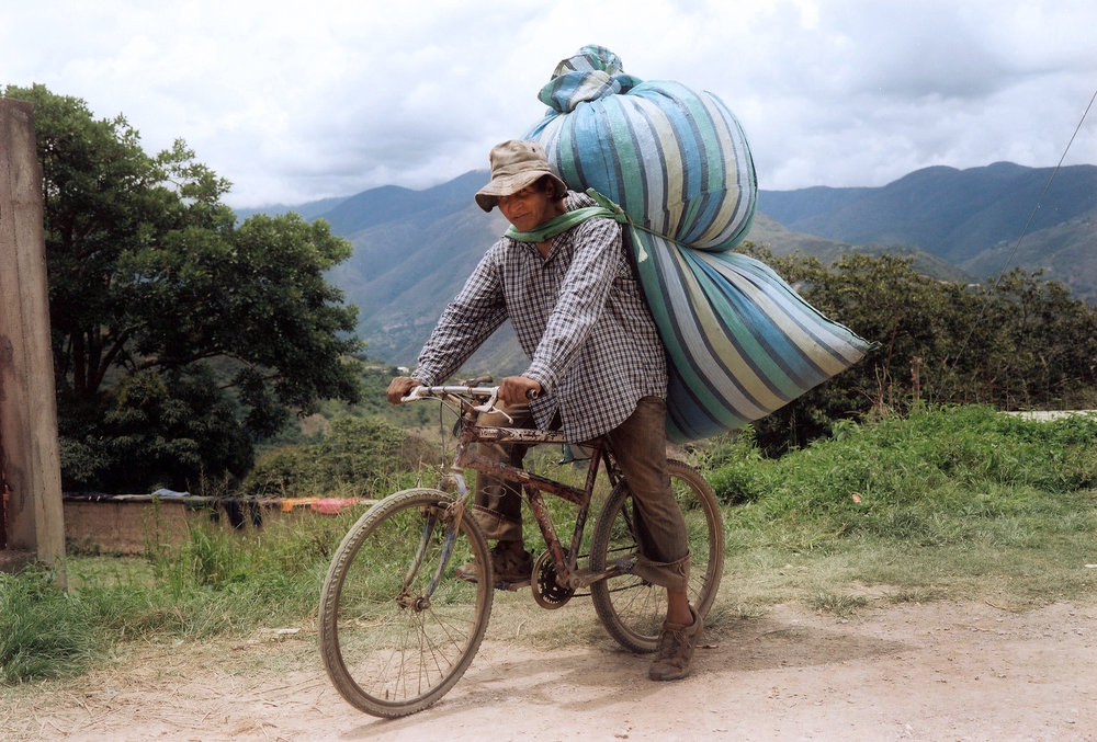 Herman coming from the coca field, in the Yungas, Bolivia