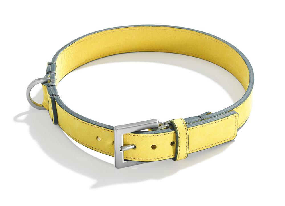 schroeders-hund-clic-clic-nubuk-leder-halsband-soleil.jpg