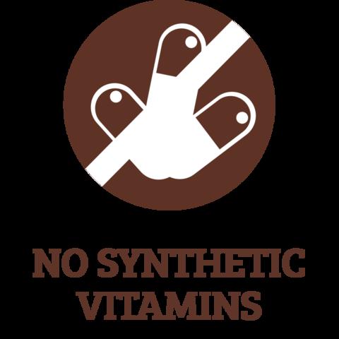 ics-NO-SYNTHETIC-VITAMINS_large.png
