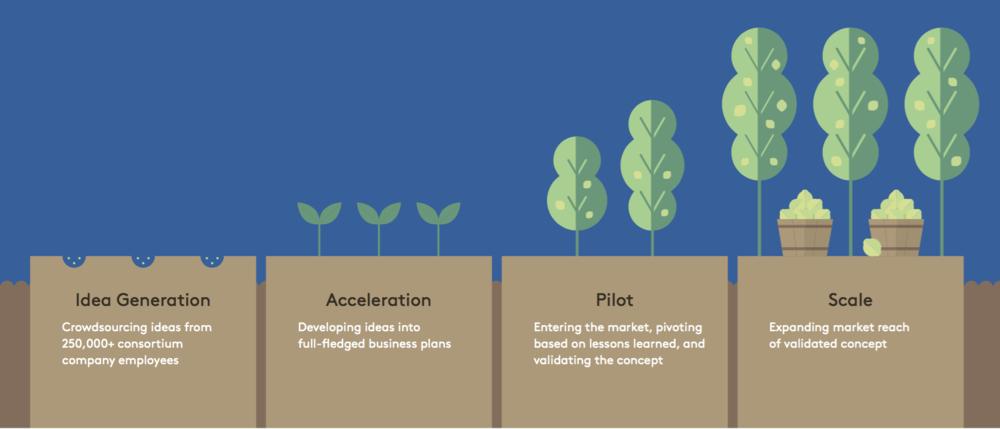 Venture Process.png