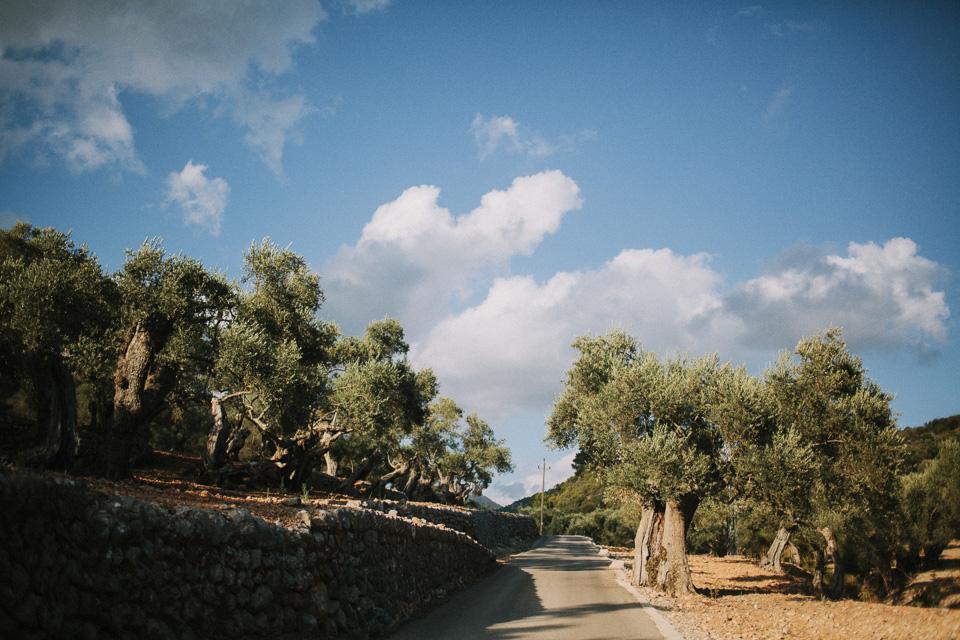 Fran-Rosa-Boda-Mallorca068.jpg