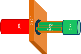 L-GRID in the Server NIC