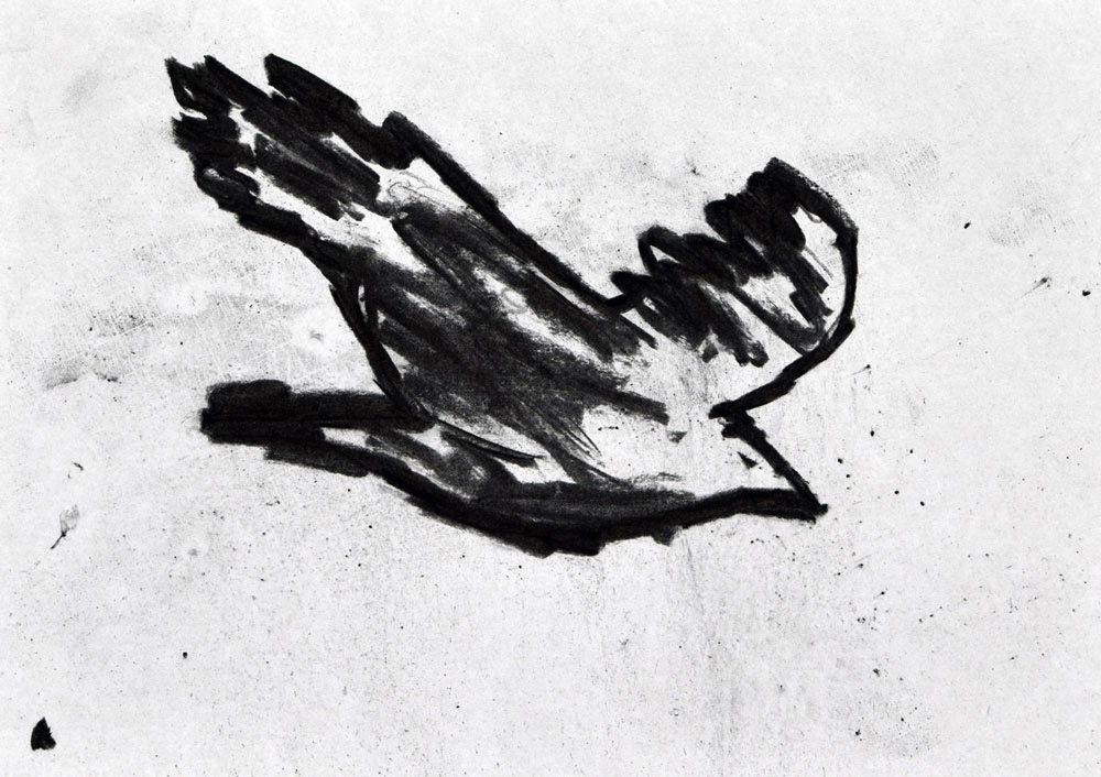 H_bird_b_no_nr1.jpg