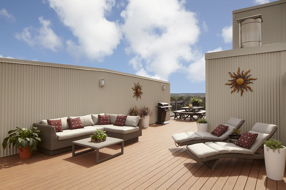 Amenities Roof Deck with River View Screening Room Lawrence Apartments to Rent