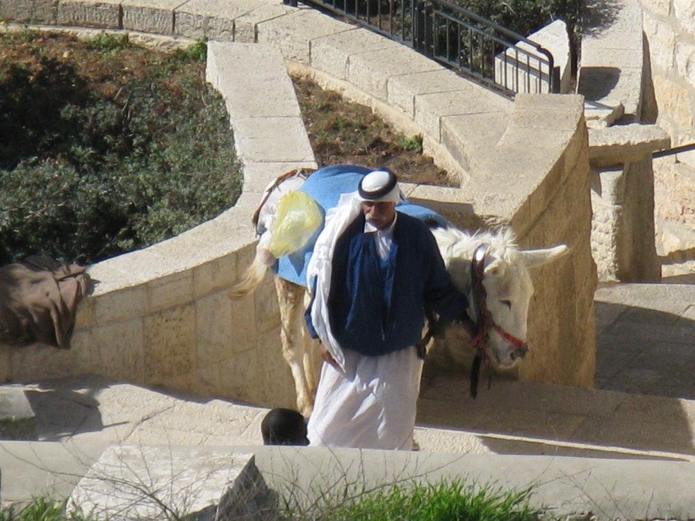 Israel 2011 912.jpg