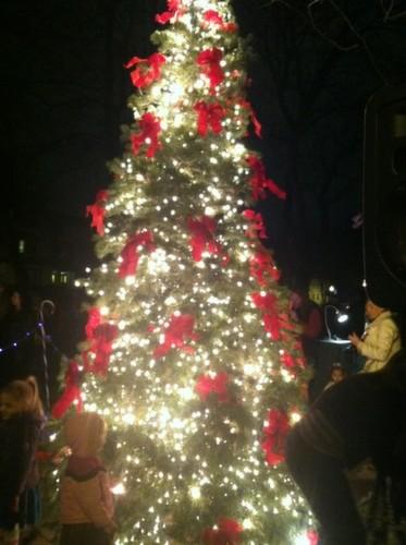 park_ave_christmas