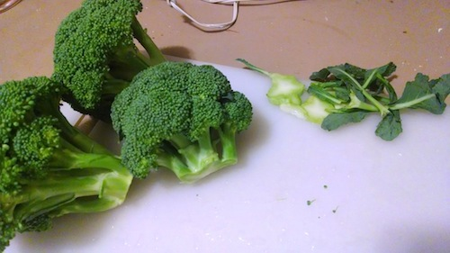 using all the broccoli