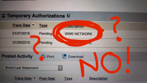 wwe-network-fraud-charge