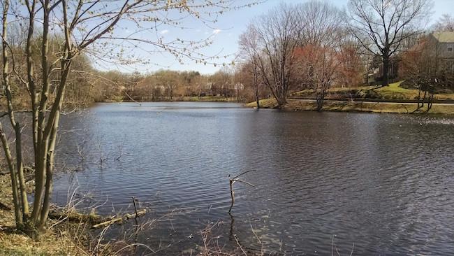 lake-braddock-va