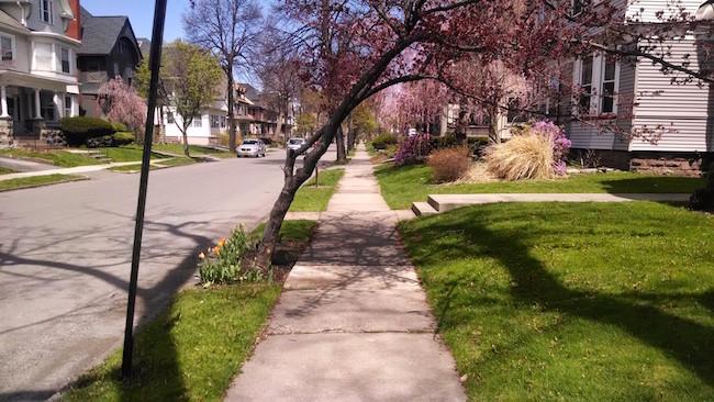 rochester-neighborhood-rutgers