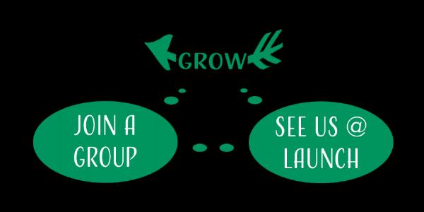 playbook GROW.png