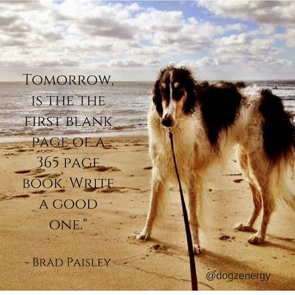 Tomorrow, is the the first blank page of a 365 page book. Write a good one.- (3).jpg