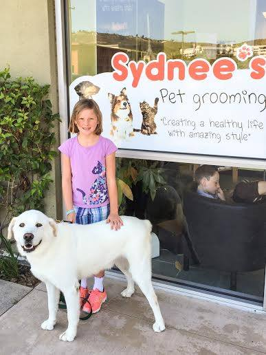 Who Are My Local Solana Beach Groomers We Get To Know Kim Of