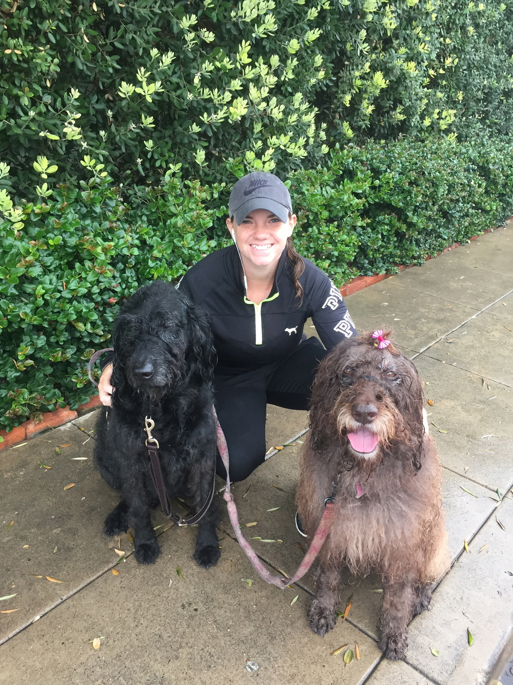 DogZenergy team member Jamie is all smiles along with Teddy and Dotty!