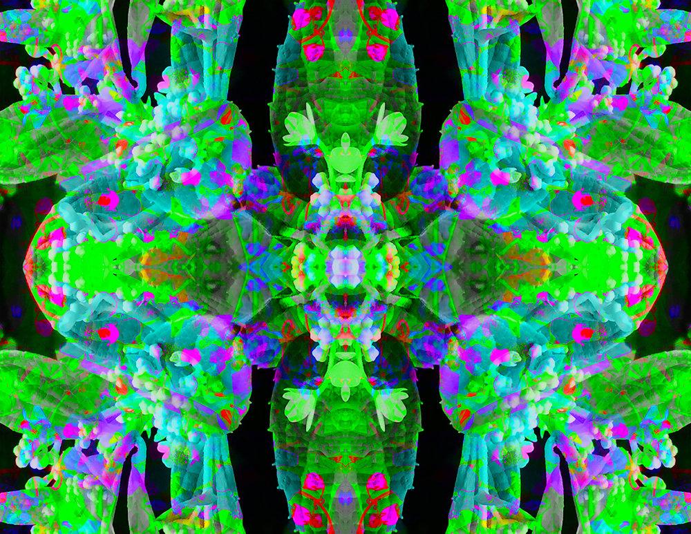 aurora borealis green(17x22)_2016-07-05 00-24-08.jpg