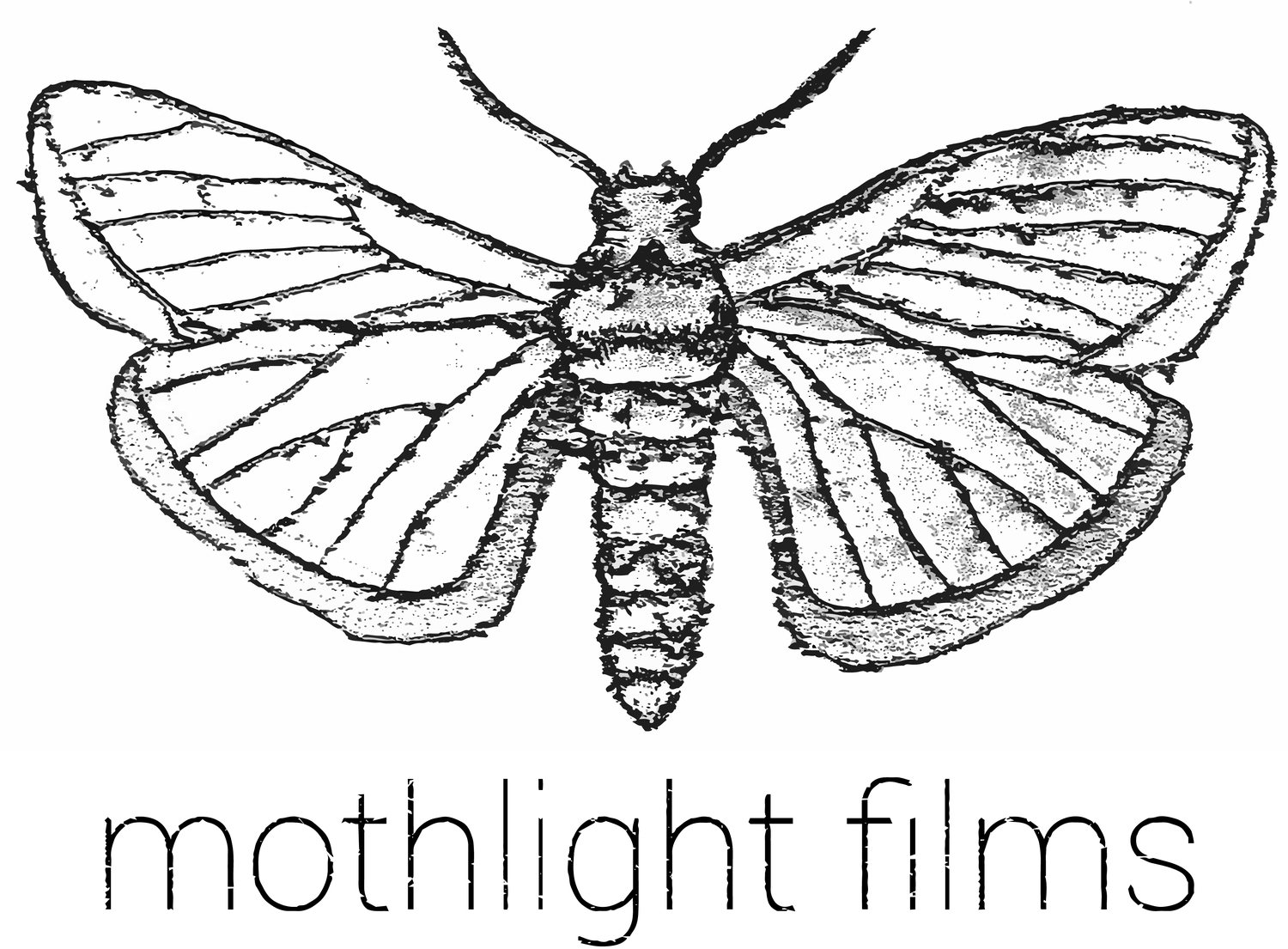Mothlight Films