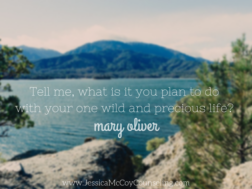 Mary Oliver | Wild and Precious Life