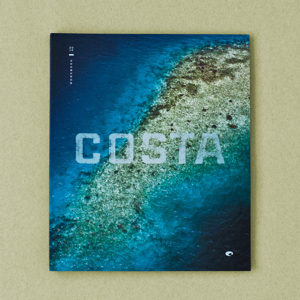 Costa_2014_Cover.jpg