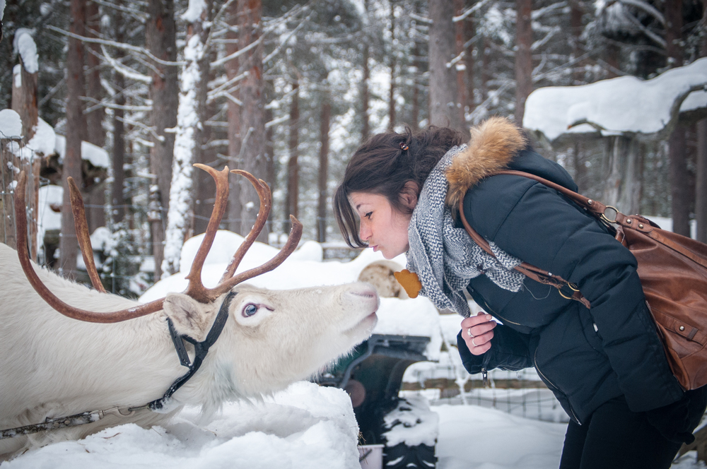 Lpl_reindeer_people_kiss.jpg
