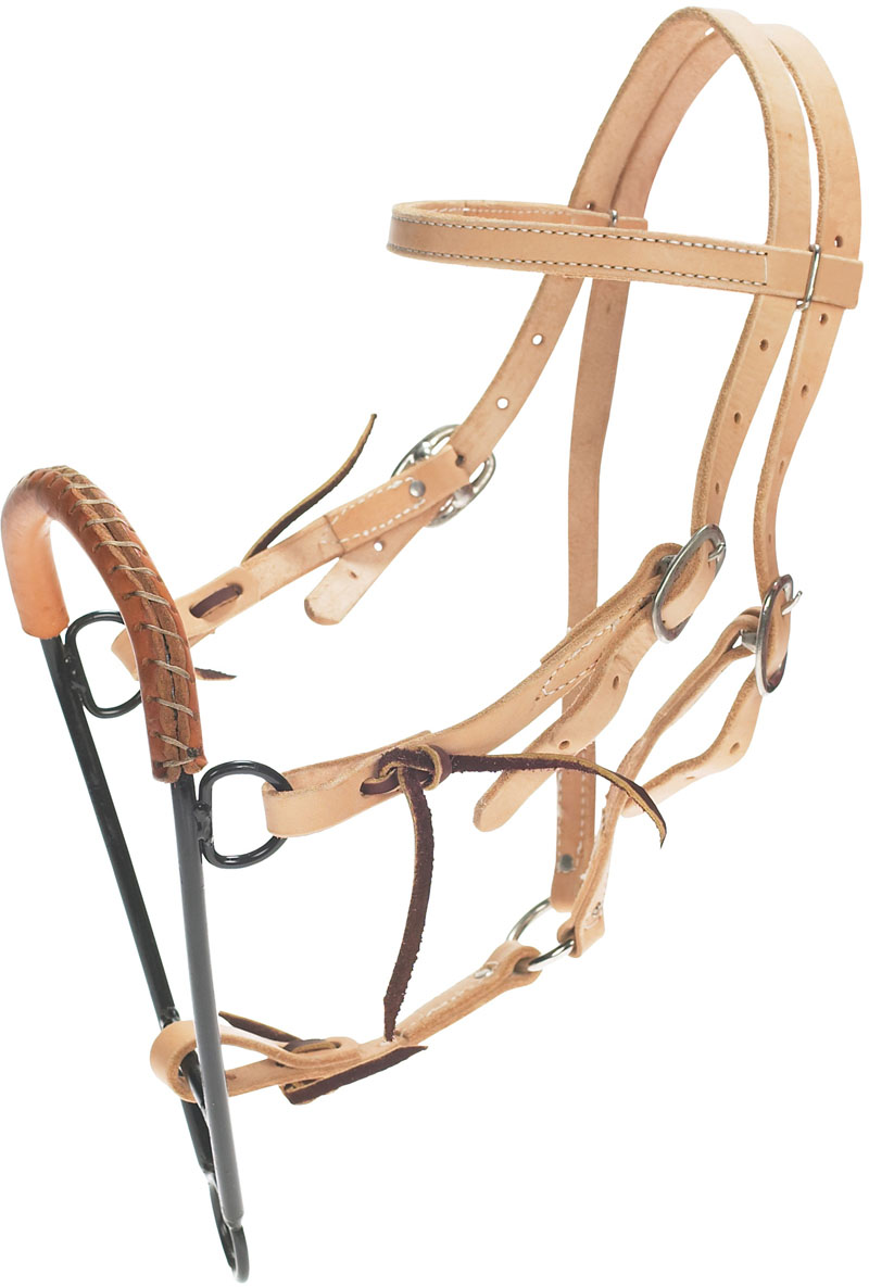 noavel headstall.jpg