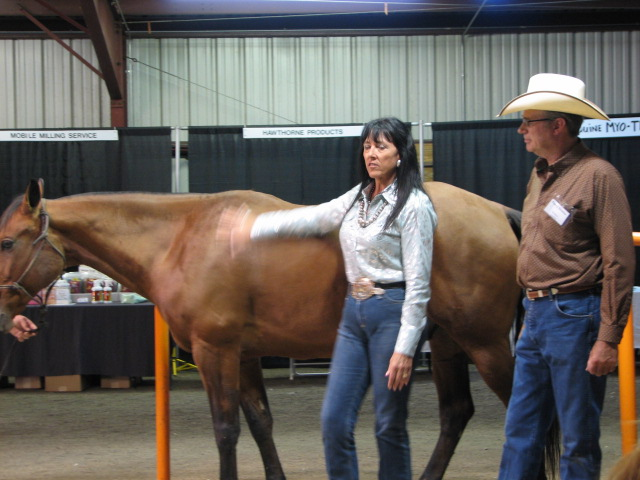 $9.95 includes S&H Shoeing the Reining Horse and Conformation with Barry Denton, Trainer, Master Farrier & Laurel Denton, Trainer of BarUbar Ranch, Skull Valley, Arizona filmed at the FNRC in 2012.