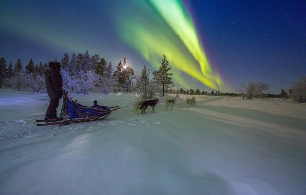 Dogsledding-Northern-light170109090108170109090108.jpg