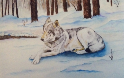 "LORNE SHANTZ ""Tundra"" watercolour $400"