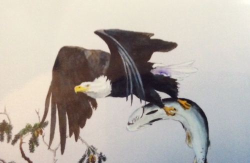"LORNE SHANTZ  ""Eagle Dinnertime"" watercolour $400"