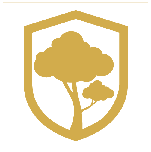 orchard-01.png